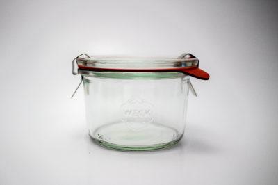 Mold Jar 751